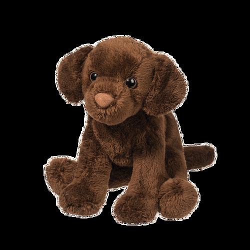 Finn Chocolate Labrador