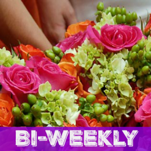 Bi-Weekly Flower Subscriptions - Starting at 3 Months