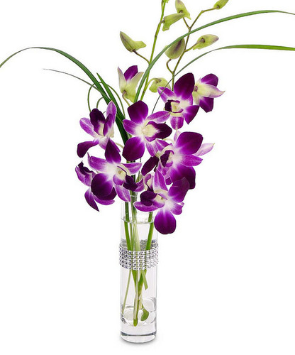 Blooming Orchid Bud Vase