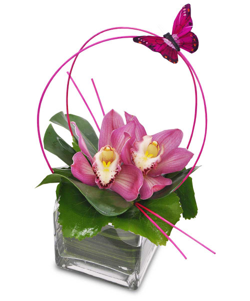 Orchid Sphere