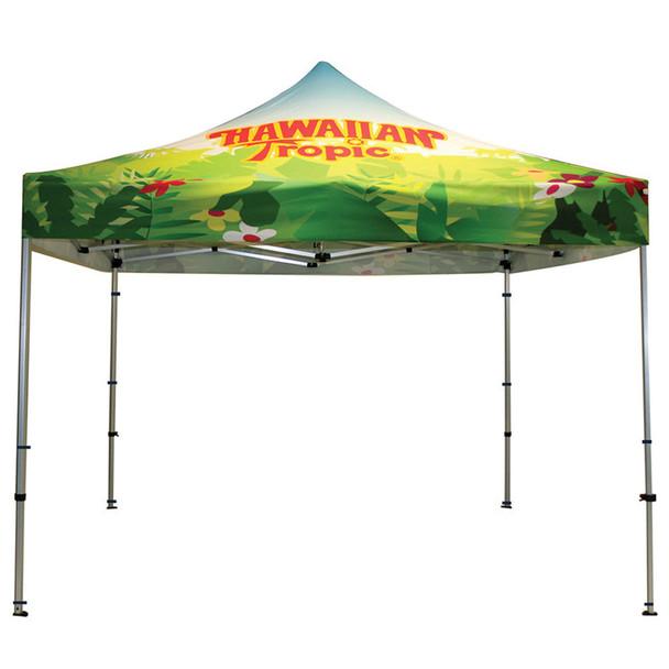 Classic Canopy Indoor/Outdoor Frame+Top