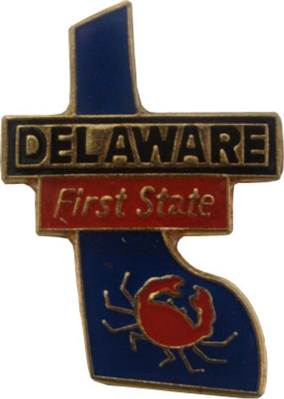 Delaware State Lapel Pin
