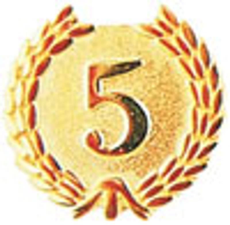 YEARS OF SERVICE (5) LAPEL PIN