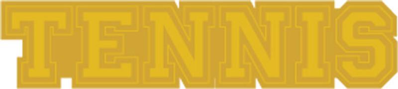 Gold Tennis Lapel Pin