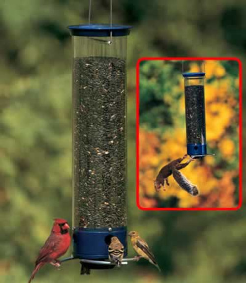 Droll Yankees Whipper Squirrel Proof Bird Feeder