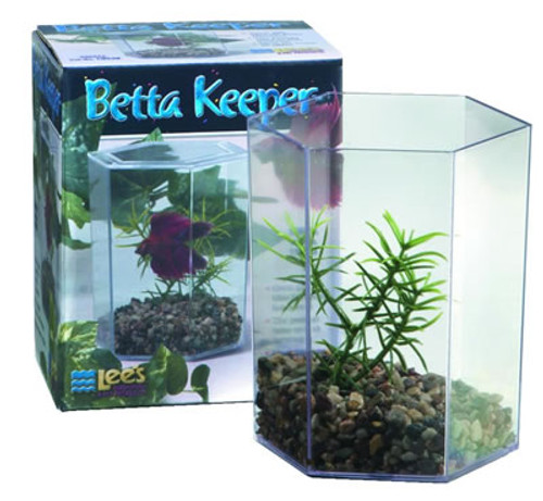Betta Keeper With Lid