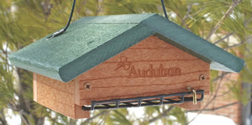 Audubon Go Green Suet Bottom Feeder