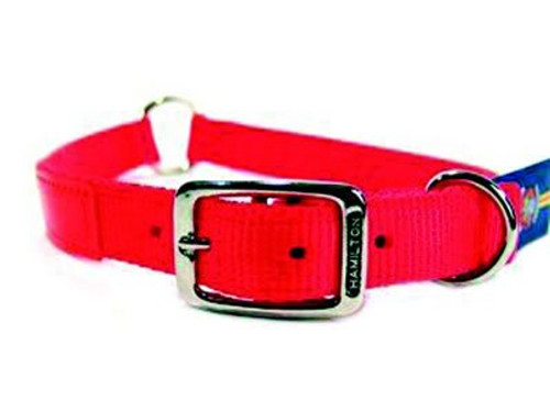 Hamilton Safe-Rite Reflective Orange Nylon Collar, 28 Inches