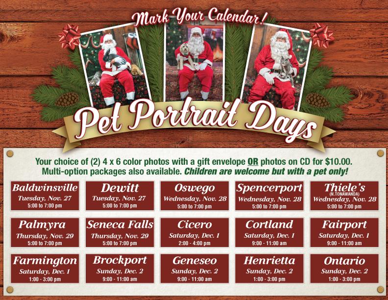 pet-portrait-landing-page.png