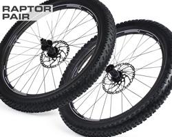 raptormp-pair-2.jpg