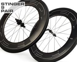 stinger9-p.jpg