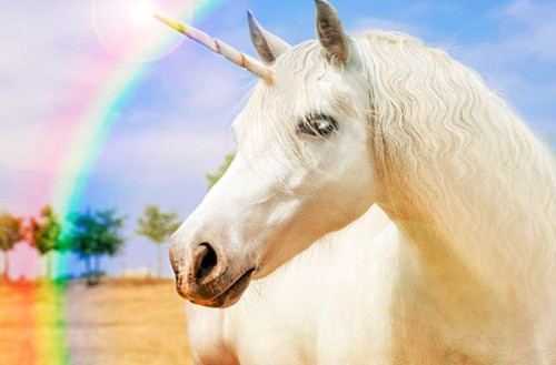 Unicorn - Aroma Oil