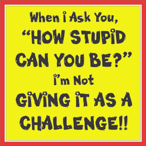 When I Ask How Stupid Can You Be...