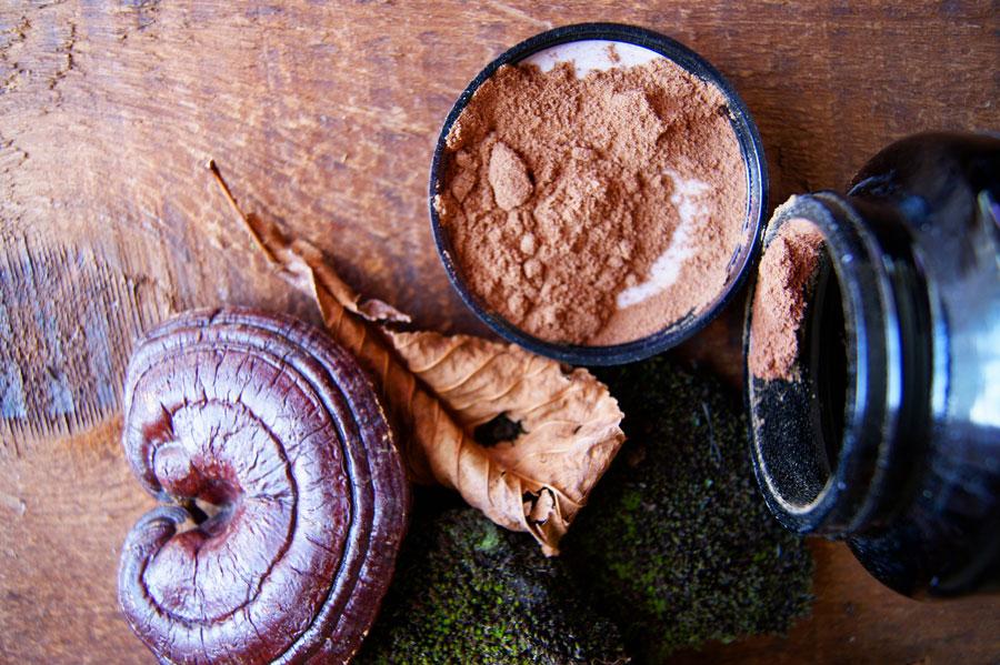 medicinal-mushroom-extract-powder-complex.jpg