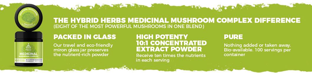 mushroom-complex-powder-difference.jpg