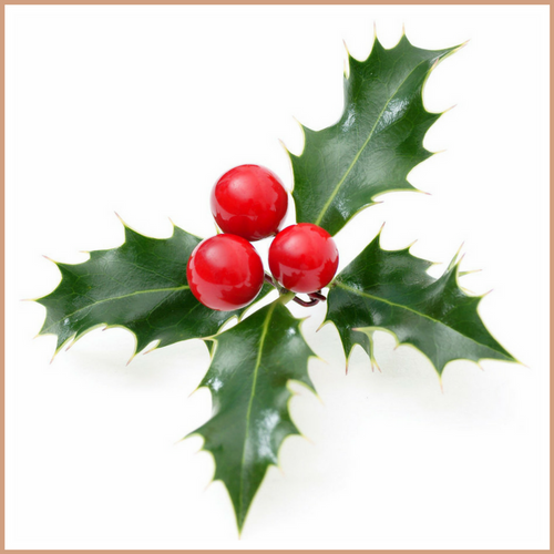 Holly Berry Candle Making Fragrance Oil
