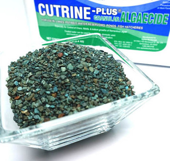 Cutrine Plus Algaecide