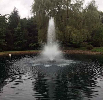 Otterbine Aerating Fountain 2 HP