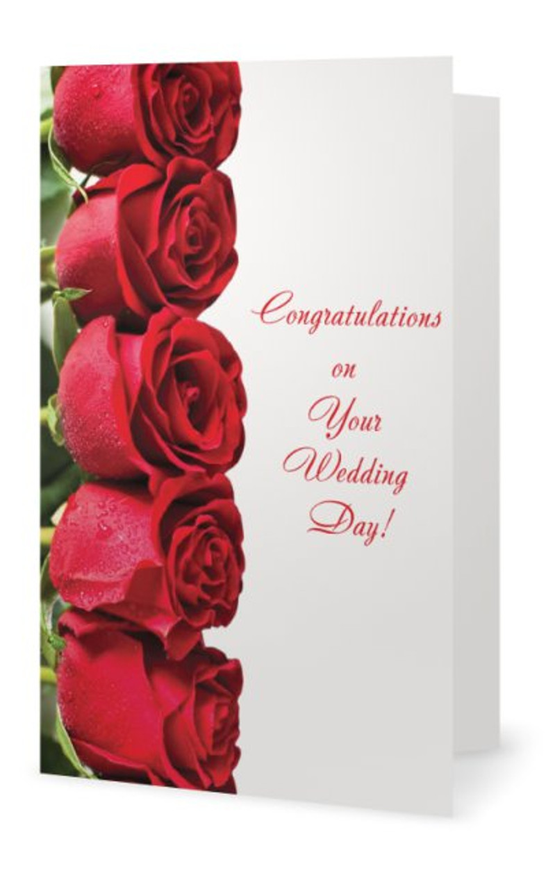 Wedding greeting card row of red roses the bride here comes the 5 x 7 wedding greeting card row of red roses the bride m4hsunfo
