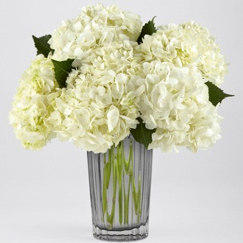 The Luxury Ivory Hydrangea Bouquet by Vera Wang