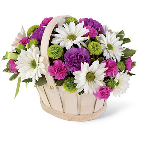 pompons, white daisy pompons, hot pink, mini carnations, purple carnations.