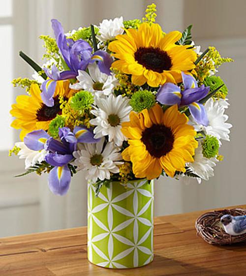 Sunflower Sweetness