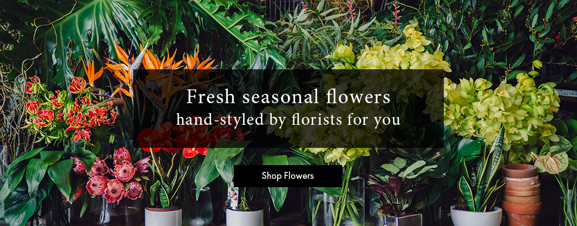 Fresh Seasonal Flowers