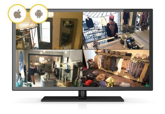 companion-tv-splitscreen-ios-android.jpg