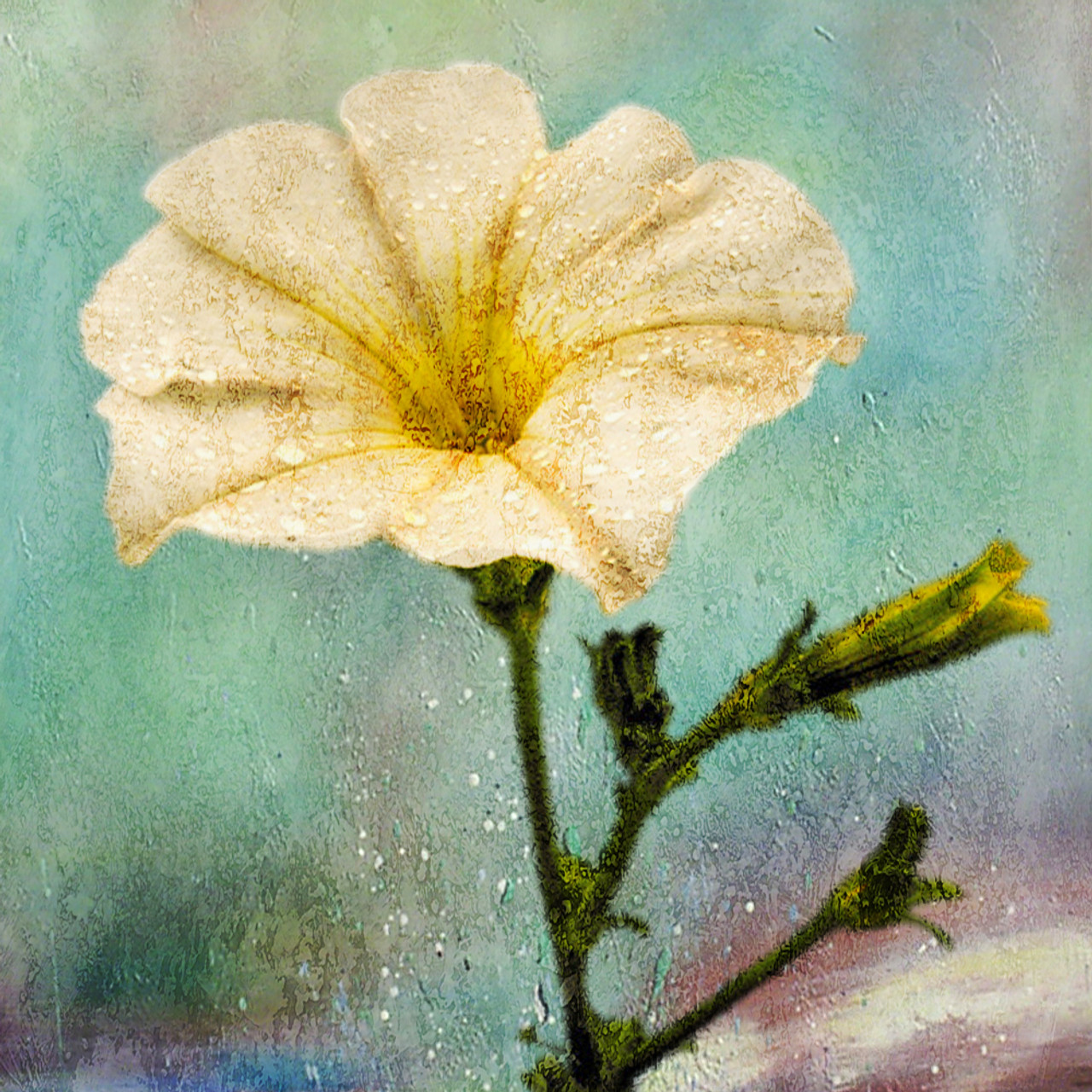 Buy Blooming Beauty 17 by Community Artists Group@ Rs. 18090. Code ...
