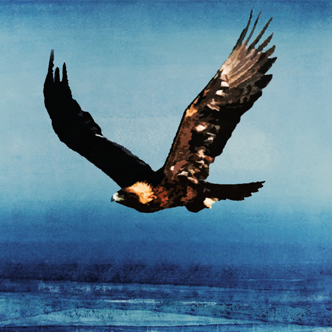 Buy Eagle 2 by Community Artists Group@ Rs. 4590. Code ...