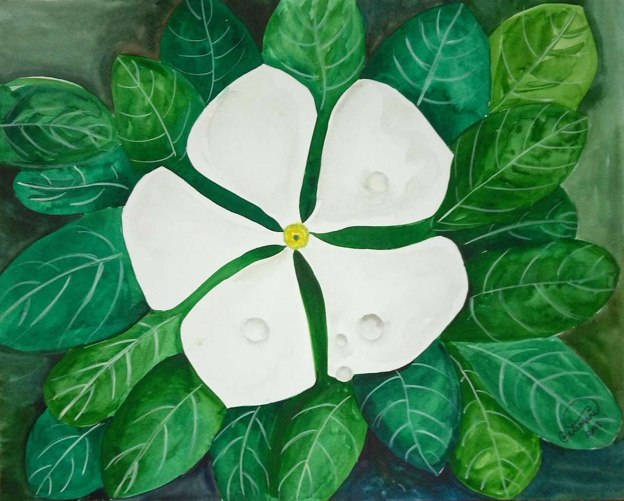 Buy white flower with water drops handmade painting by aarathi white flowers with water drops on it and green leaves back groundwhite flower mightylinksfo