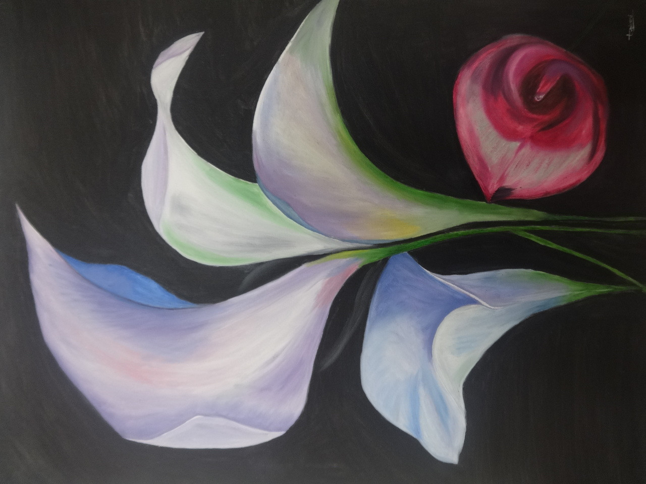 Buy Pink and Blue Calla Lily flowers Handmade Painting by Triveni ...
