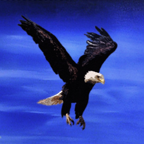 Buy Eagle 1 by Community Artists Group@ Rs. 4990. Code ...