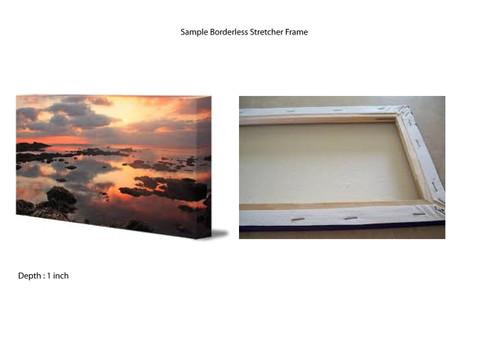 Stretcher Borderless Frame (+ Rs. 1550) - Fizdi.com