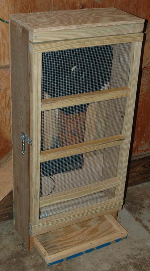 cage-1.jpg