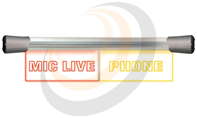 LED Twin Flush Mounting 2 x 20cm MIC LIVE & PHONE sign - Image 1