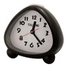 Talking Analog Alarm Clock