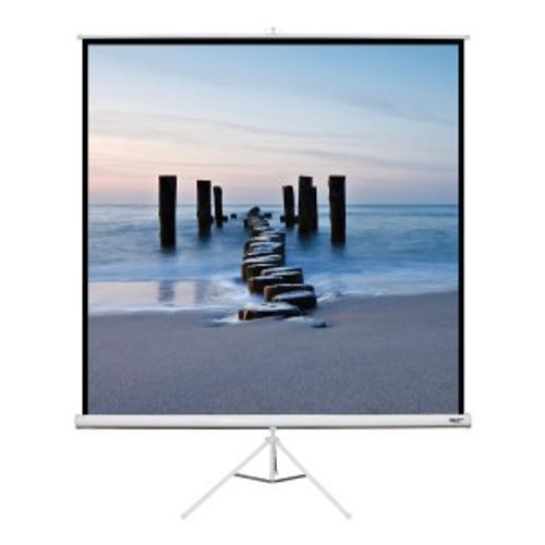 """HamiltonBuhl 113"""" Diag. (80x80) Tripod Projector Screen, Square Format, Matte White Fabric"""