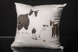 Manx Cat Cushion