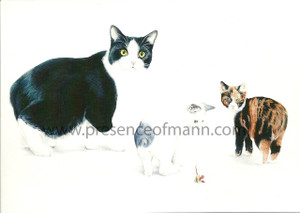 Tailess Cats from the Isle of Man, greeting card