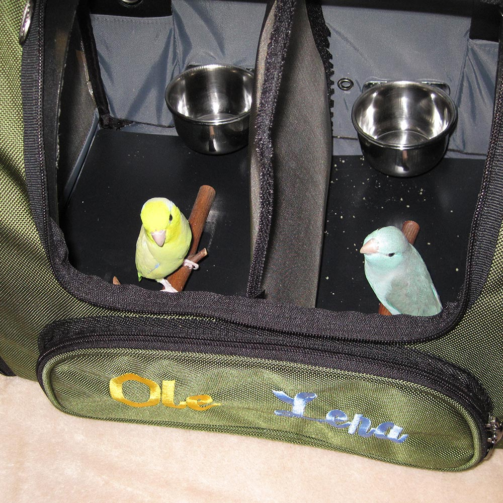 Two Parrotlets traveling in a Celltei bird airline carrier