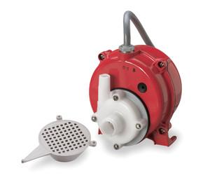 Water & Oil Pump