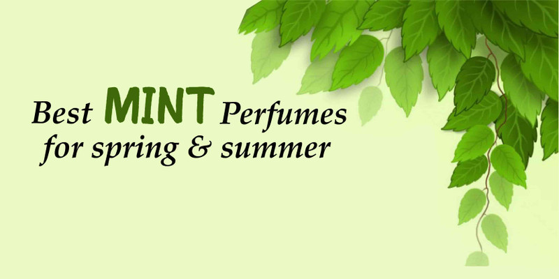 Best Mint Perfumes for Summer and Spring