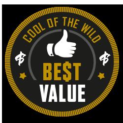 cotw-best-value-award.png