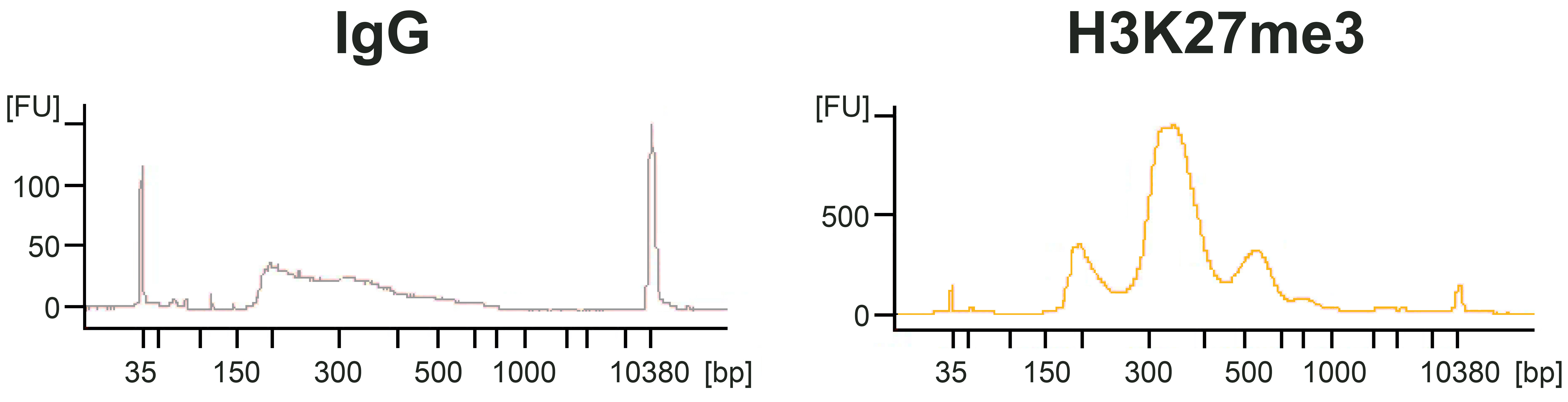 15-1017 Size Distribution of Released Chromatin