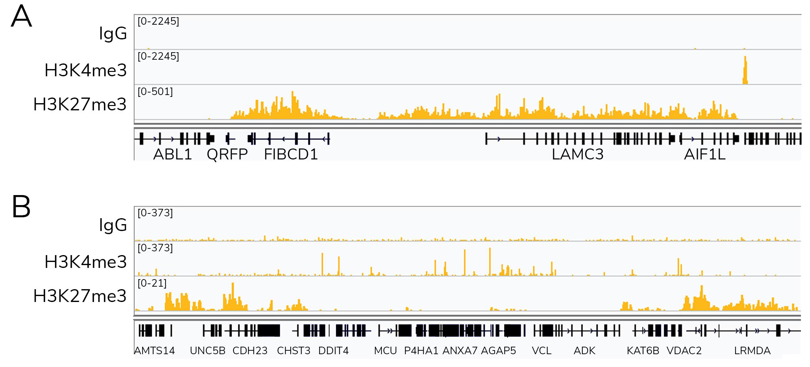 15-1117 CUT&Tag Data