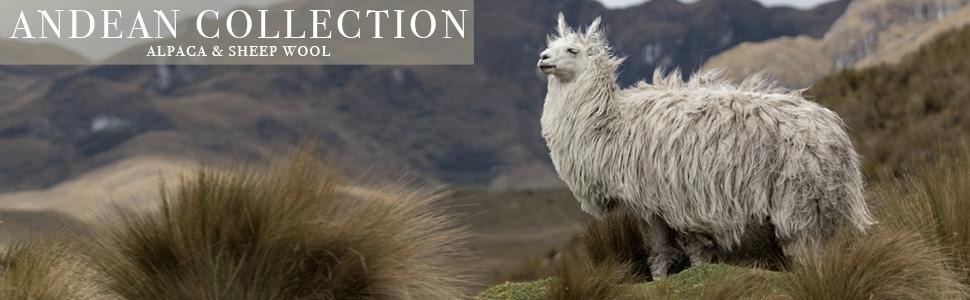 alpaca-banner3.jpg