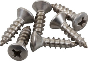 "1"" Tapping Screw (6ea)"