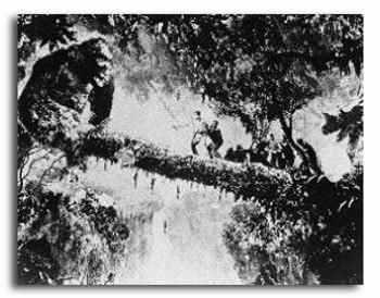(SS215605)  King Kong Movie Photo