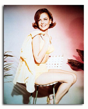(SS3025568) Shelley Fabares Movie Photo